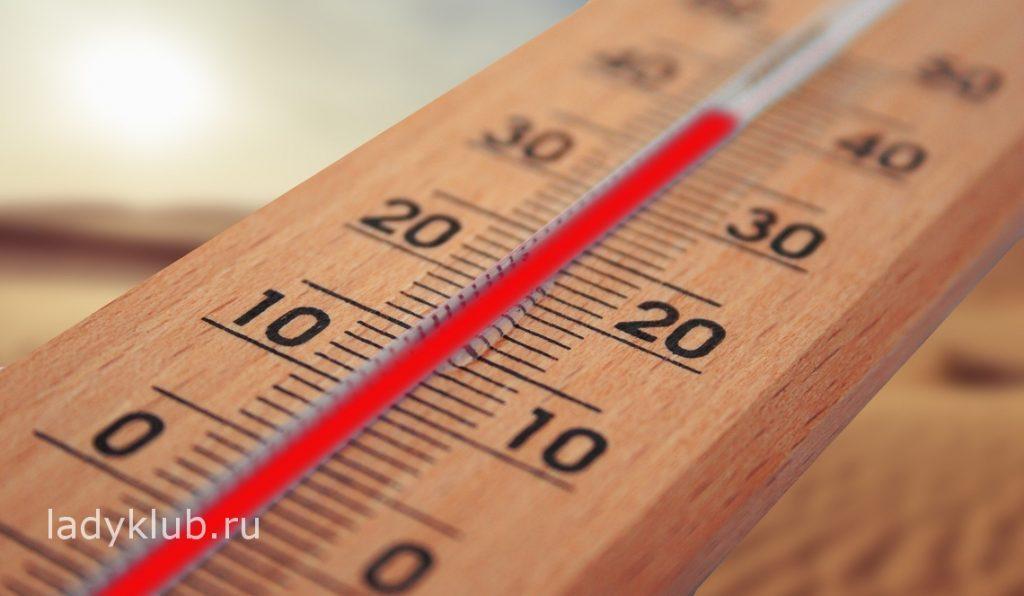 Соблюдаем оптимальный температурный режим