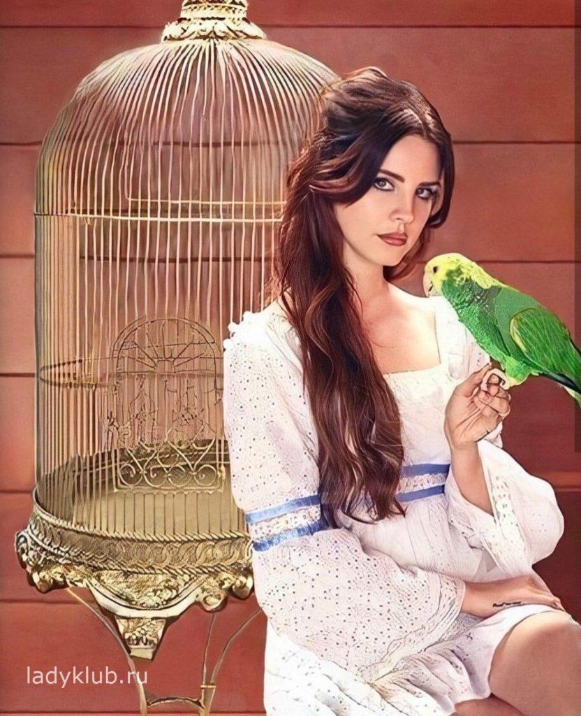 Лана Дель Рей с попугаем фото 53