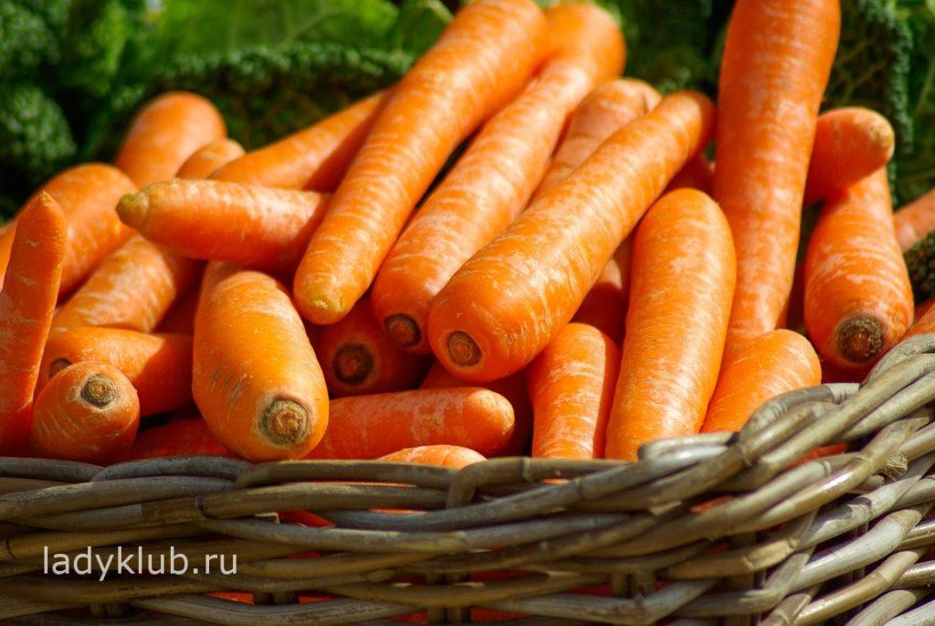 Морковь источник бета каротина